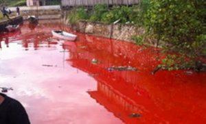sungai kediri merah
