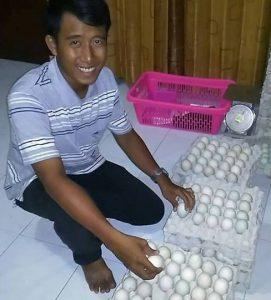Fajrul Falakh, Sedang mensortir Telur Bebek sebelum di kirim ke pelanggan.