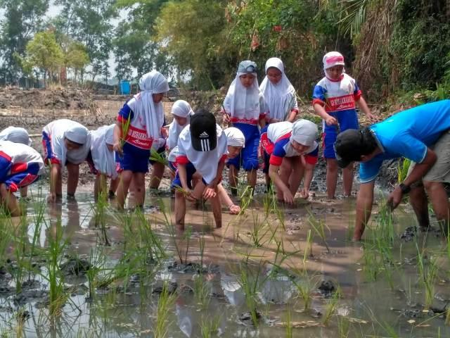 Suasana PLK kelas 3 SD Muhammadiyah 15 Surabaya