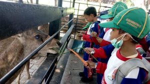 Suasana anak anak Limas, Cintai Hewan di Kebun Binatang Surabaya