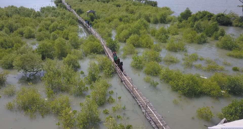 Lokasi Program Berkelanjutan Petrokimia Gresik Restorasi Mangrove Mengare